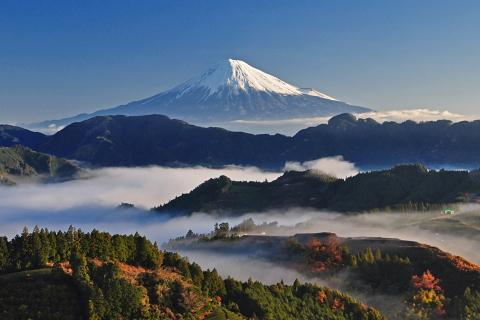 富士旬景:清水区吉原の雲海と富士山!